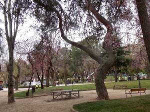 Concordia-parque
